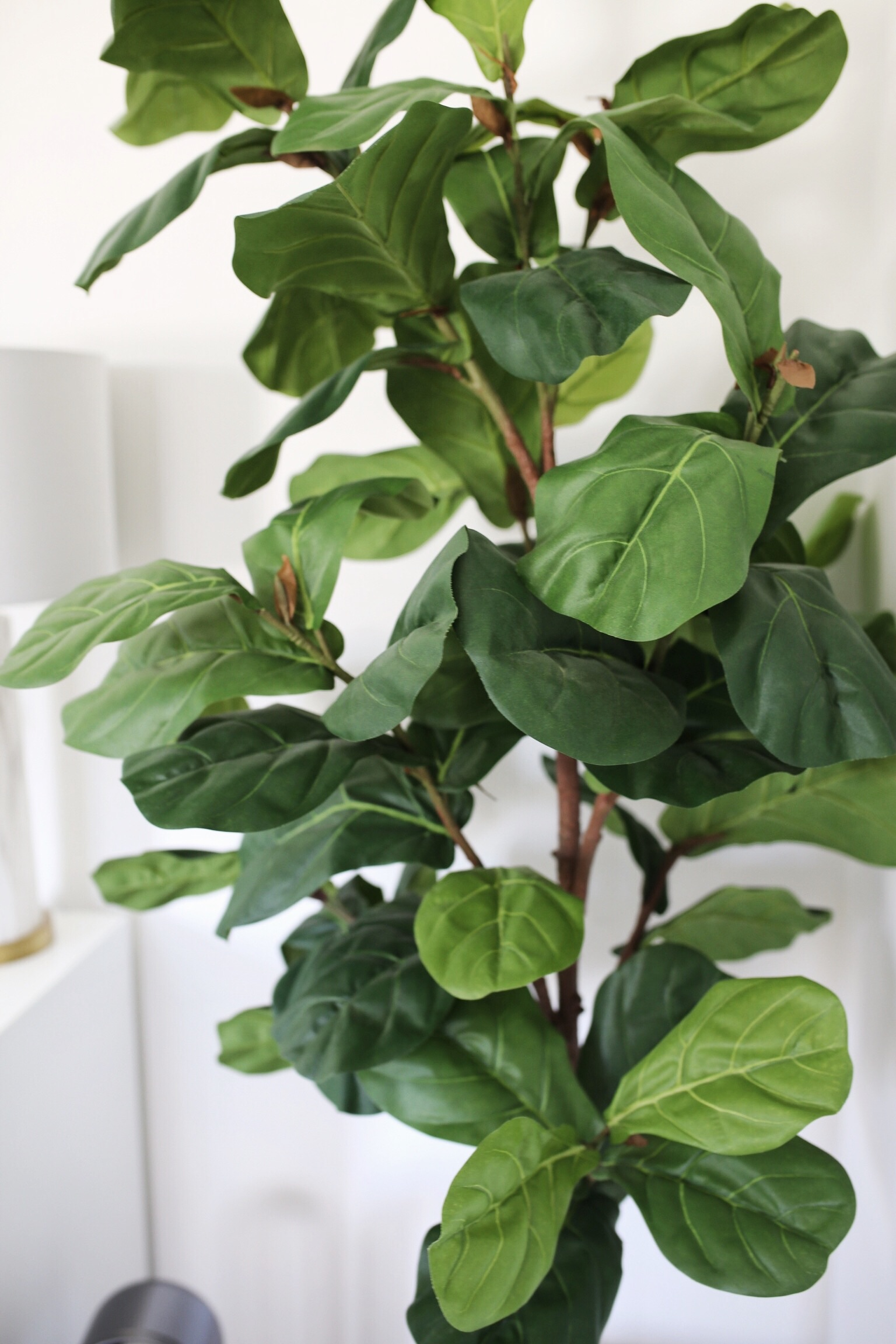 Best Fake Artificial Faux Realistic Plants That Look Real Fiddle Fig Tree