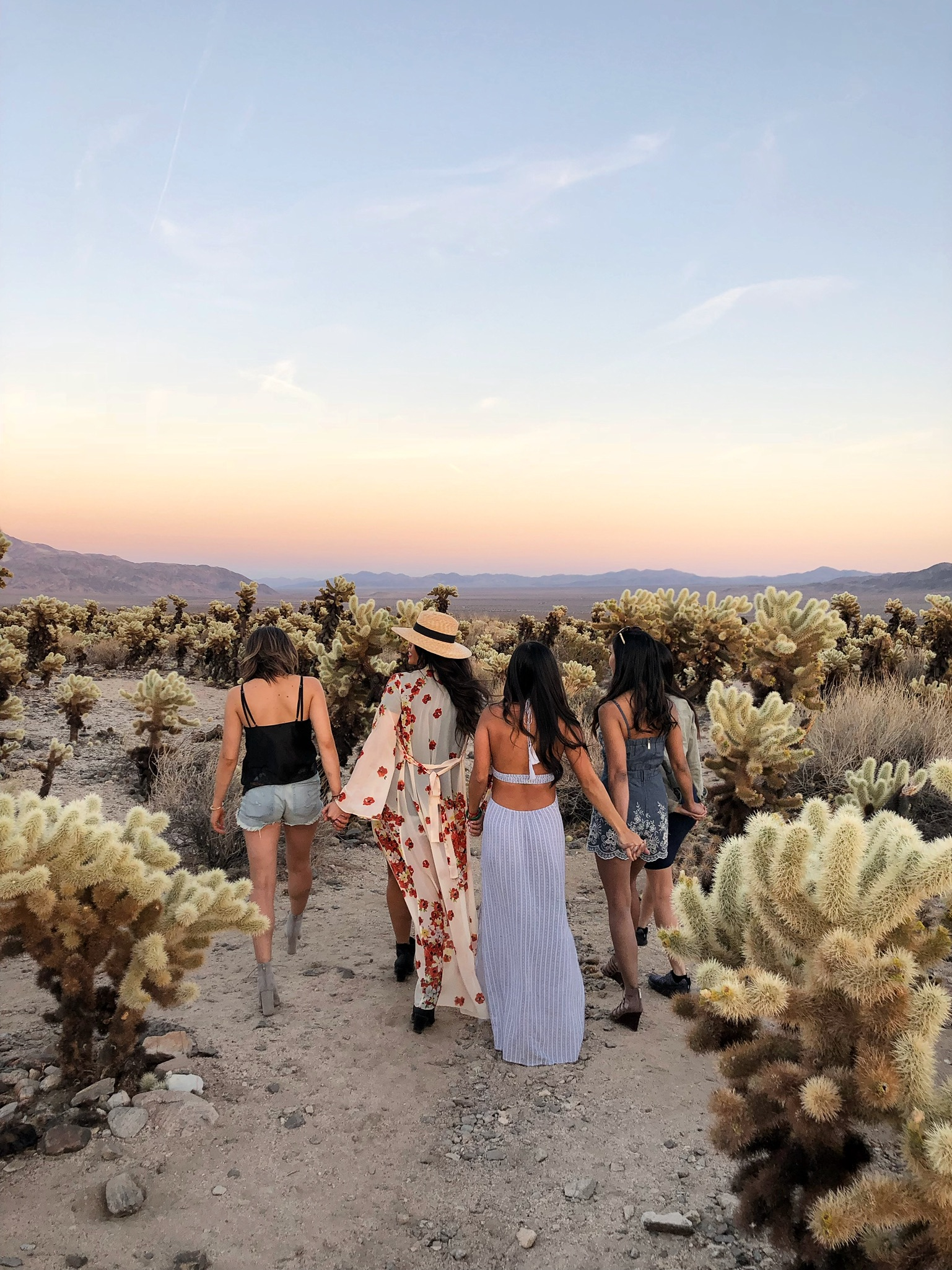Most Instagram-Worthy Spots in Palm Springs Joshua Tree