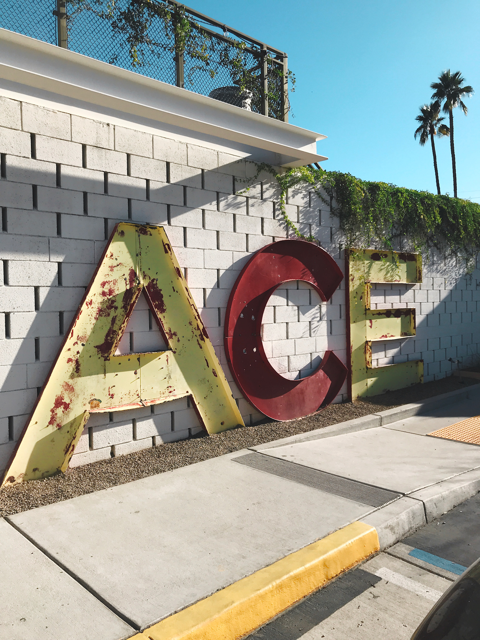 Most Instagram-Worthy Spots in Palm Springs What To Do Ace Hotel